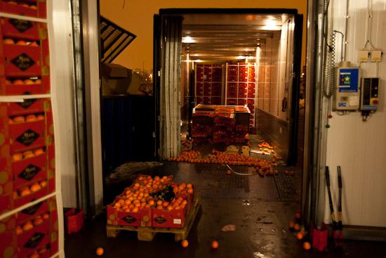 Många kartonger och ännu fler Clementiner