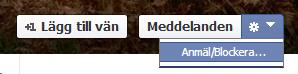 Anmäl falska profiler till Facebook